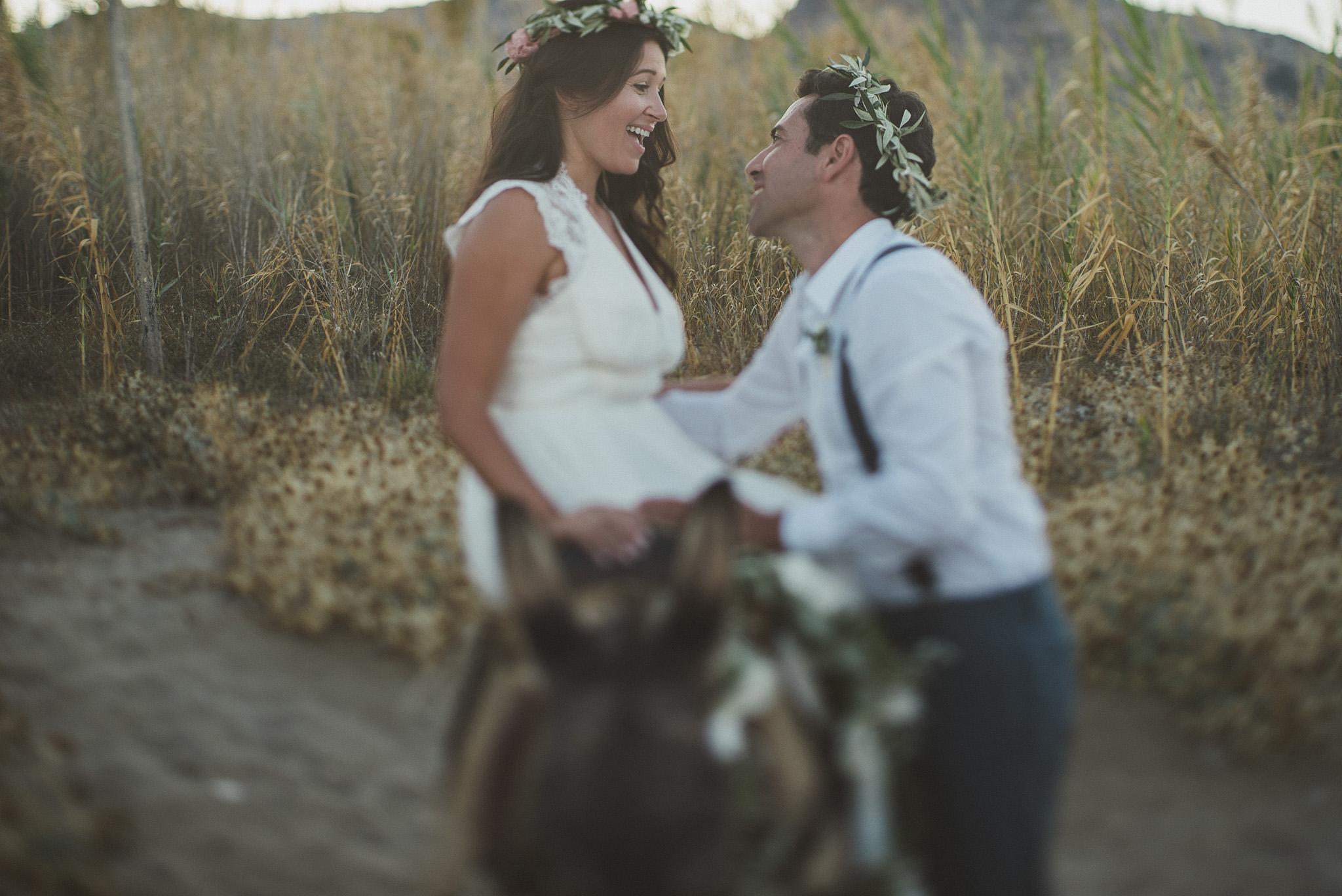 Donkey at traditional wedding