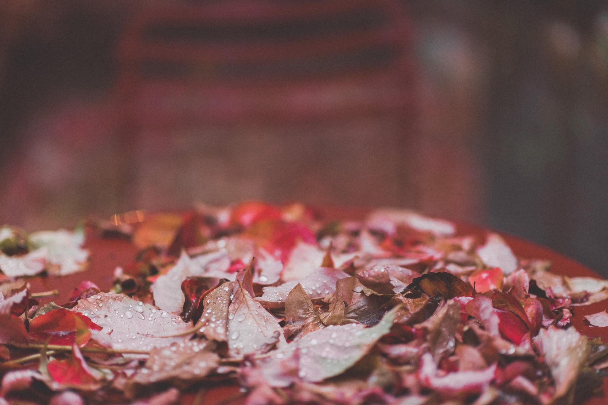 Autumn in Chania Crete Greece